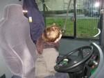 BVG Bus-Schule_005